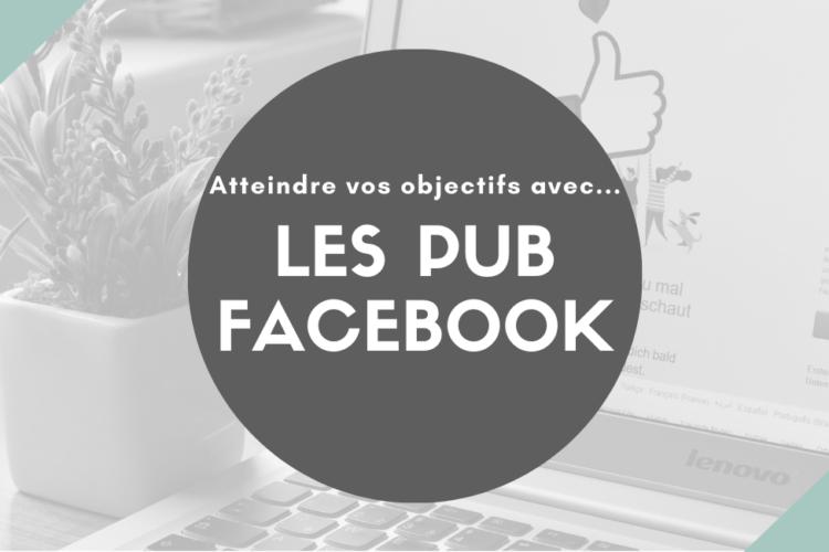 pub facebook les zebres nomades
