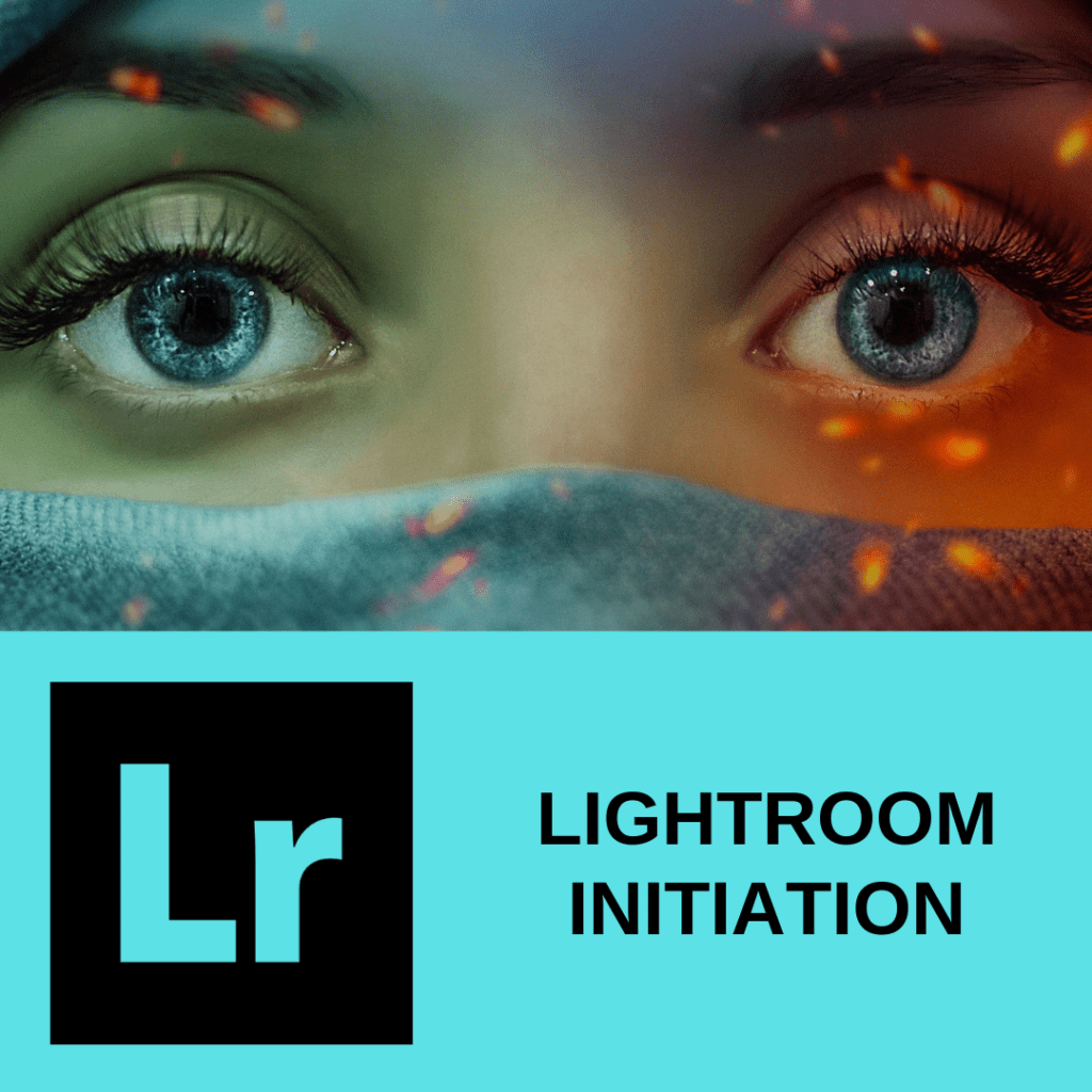 LIGHTROOM-INITIATION formation sur les zebres nomades